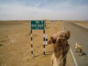 Rajasthan - Desert du Thar