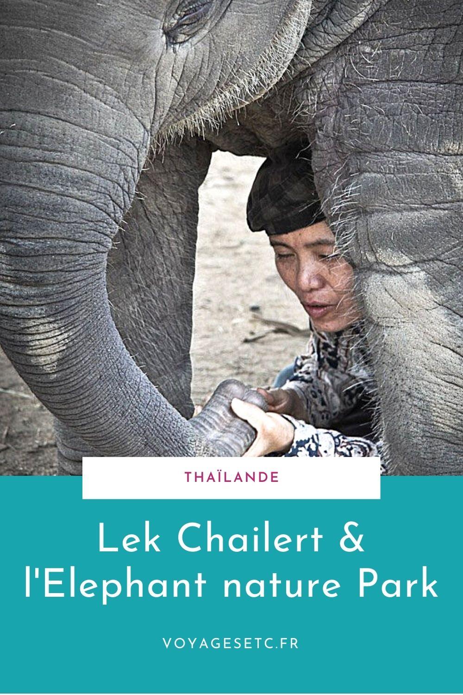 Lek Chailert, la femme qui murmurait à la trompe des éléphants