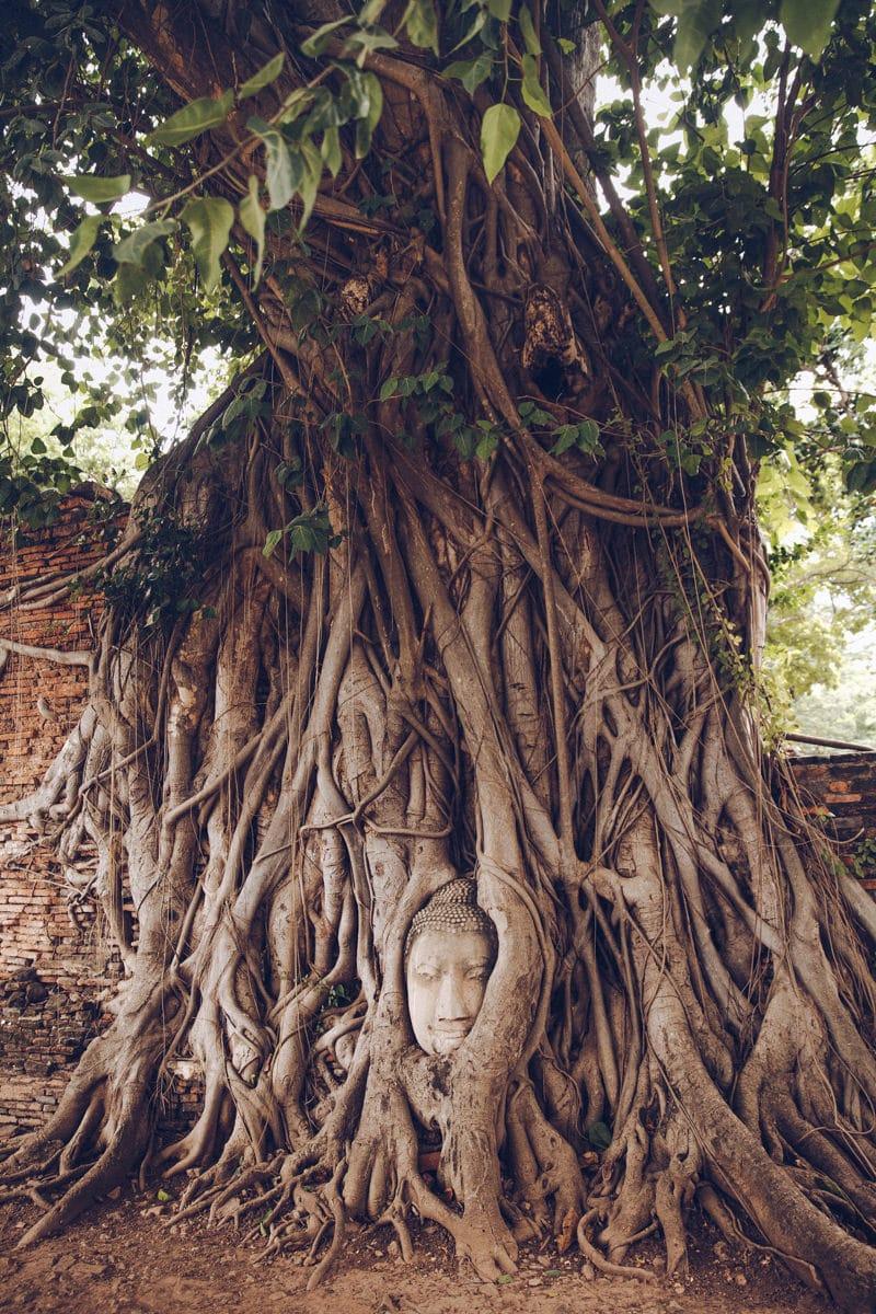 Visiter Ayutthaya et passer par le Wat Mahathat