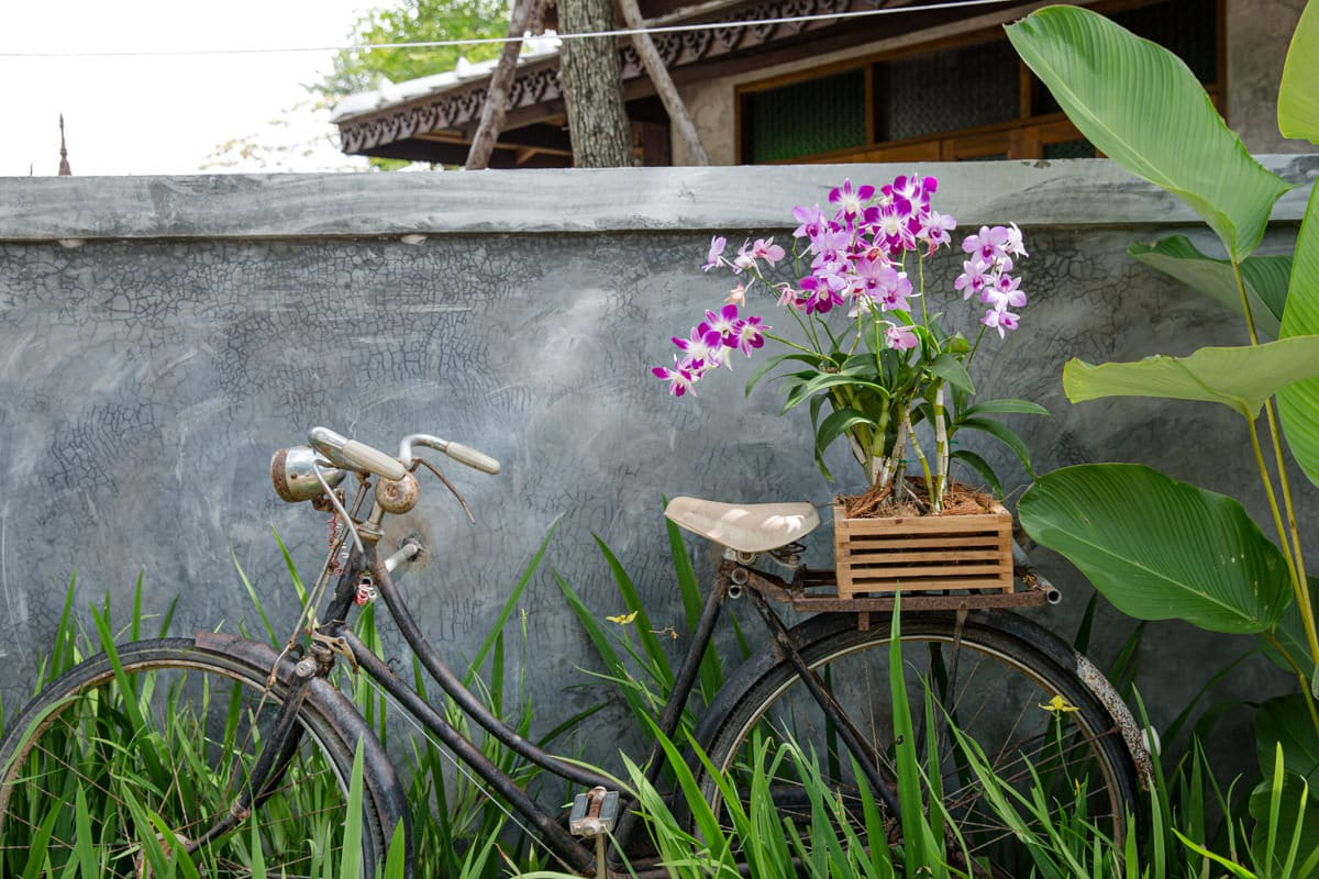 Louer un vélo à Chiang Mai, c'est la bonne idée pour se déplacer plus rapidement d'un temple à l'autre