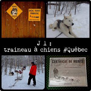 Traineau à chien Quebec