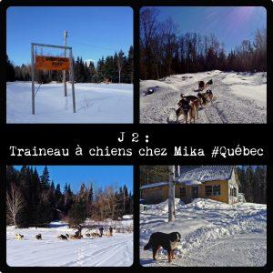 Traineau à Chiens Quebec