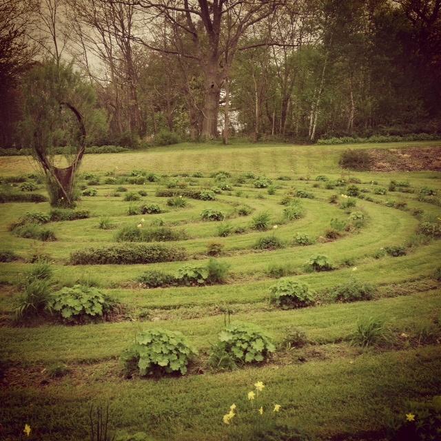 Tangled Garden Nouvelle Ecosse