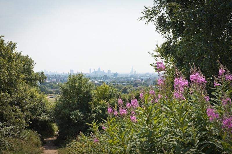 Visiter Londres - vue sur la city de parliament hill