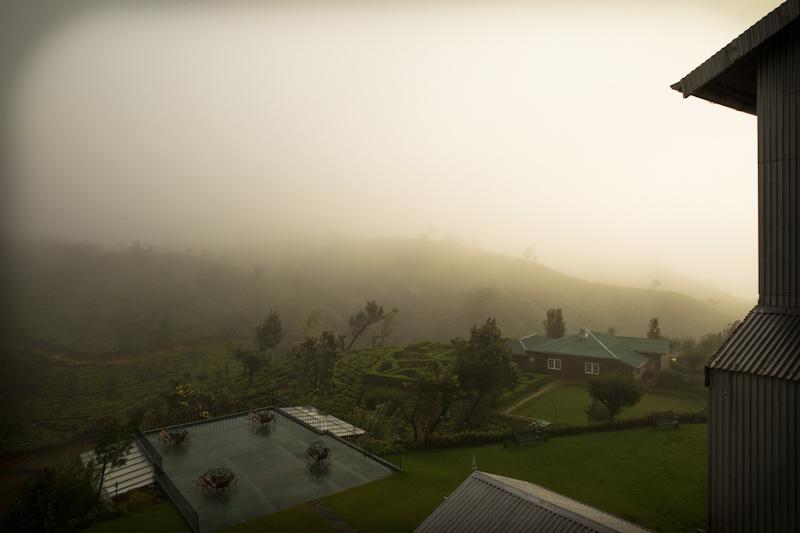 Heritance Tea factory - vue de ma chambre au petit matin