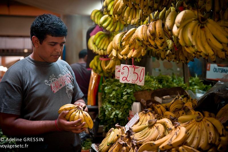 Marché de l'ile Maurice - Monsieur bananes