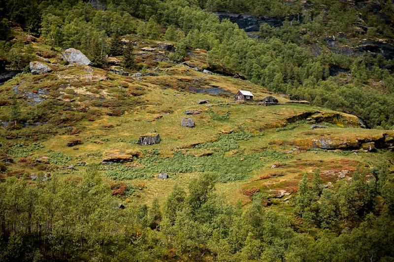 Retrospective 2013 - Ferme d'été Norvège