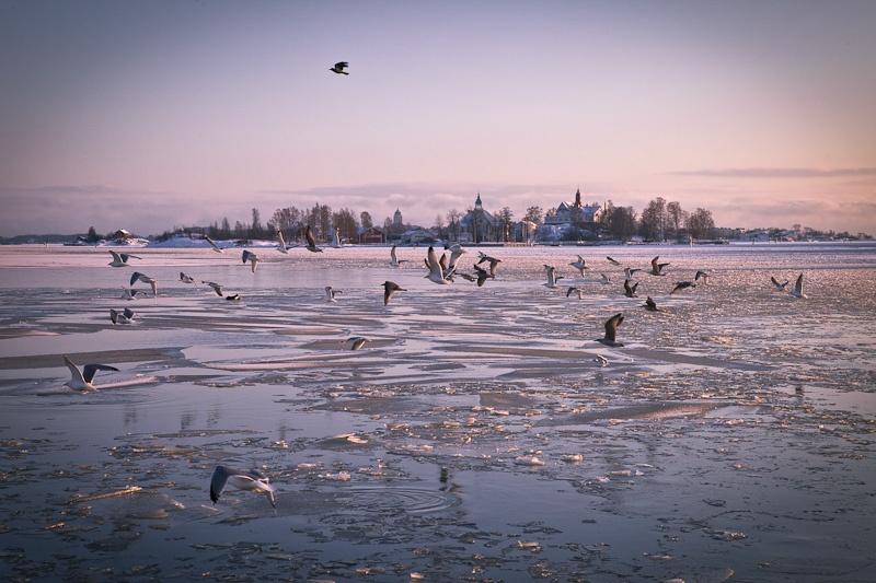 Une semaine en Finlande - coucher de soleil sur Helsinki