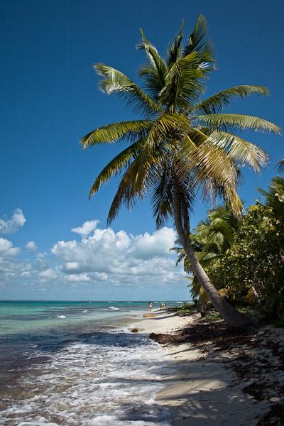 Croisiere dans les caraibes - Saona beach république dominicaine
