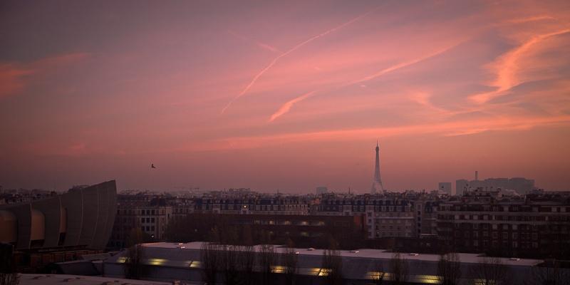 La tour Eiffel et l'oiseau- Paris