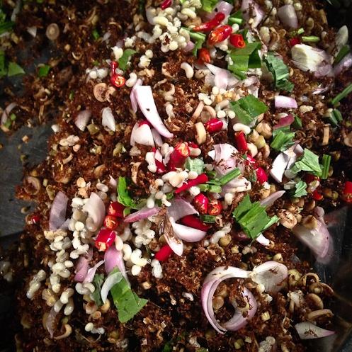 Phimai - salade d'insectes