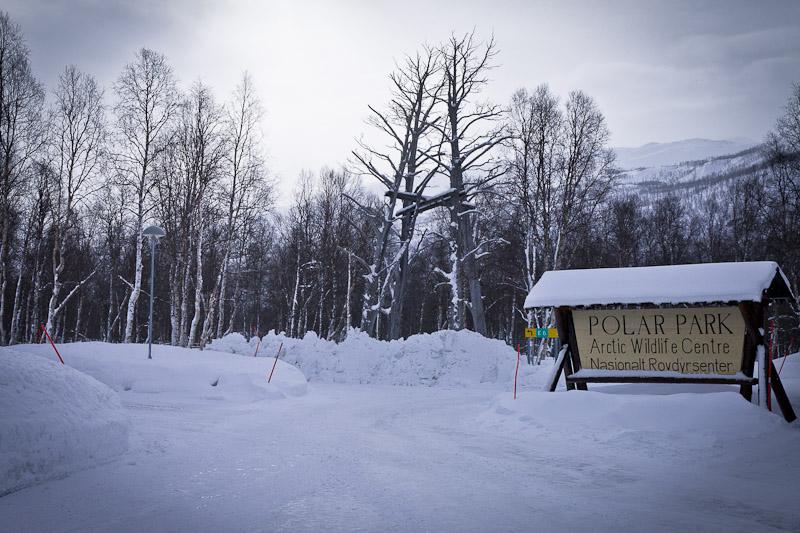 Polar Park Norvege - Polar park