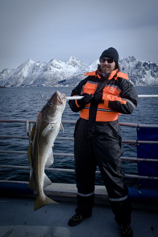 Safari polaire en Norvege - Le pecheur de cabillaud