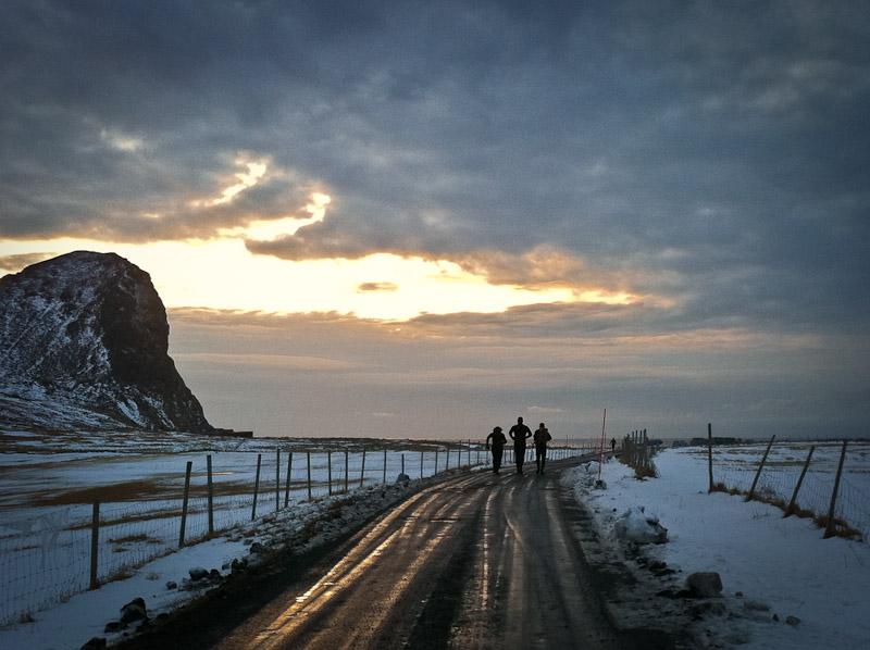 Surfe au-dessus du cercle ploaire Norvège Unstad - Pingouins en route vers la mer
