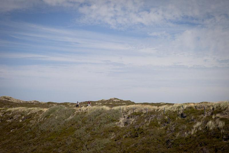 Mer des Wadden - Vélo dans les dunes