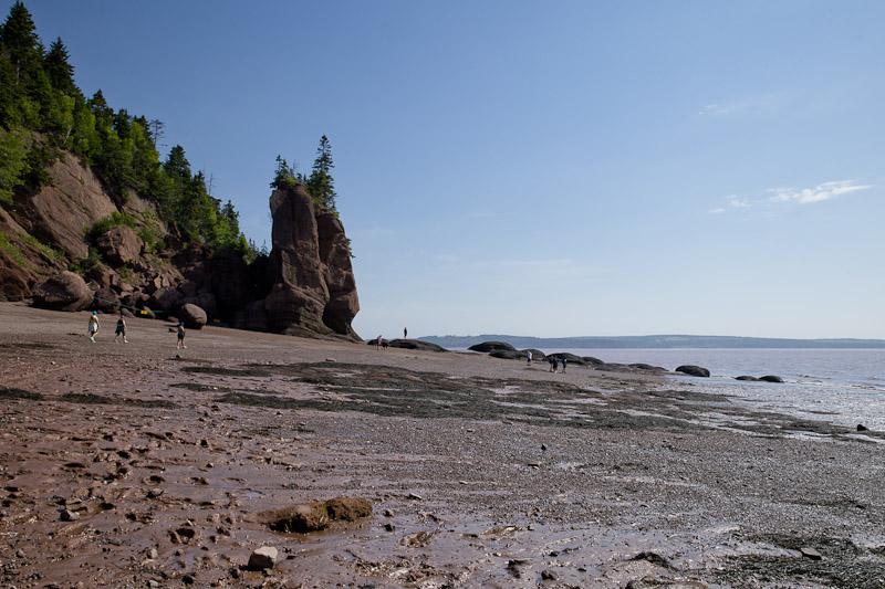 Nouveau Brunswick - baie de fundy marée basse