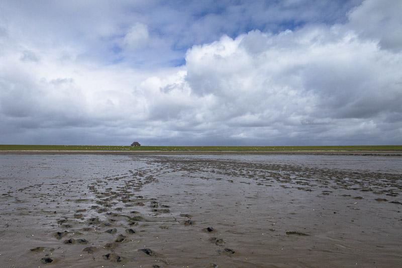 Dans la mer des wadden les pieds dans la boue à Sylt