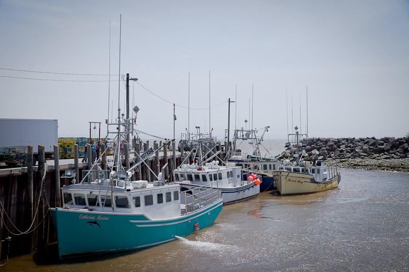 Nouveau Brunswick - Dans le port d'Alma
