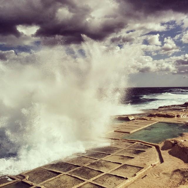 les marais salants de marsalfon Gozo Malte