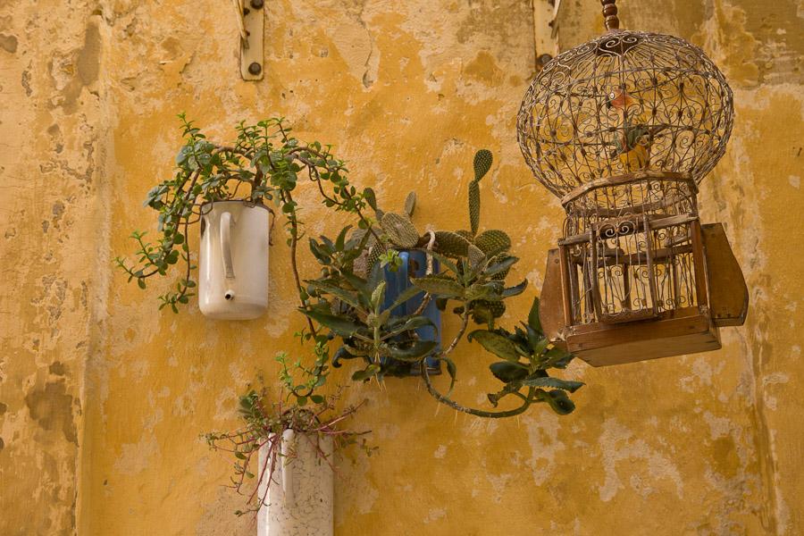 Gozo malte - atmosphère victoria Gozo