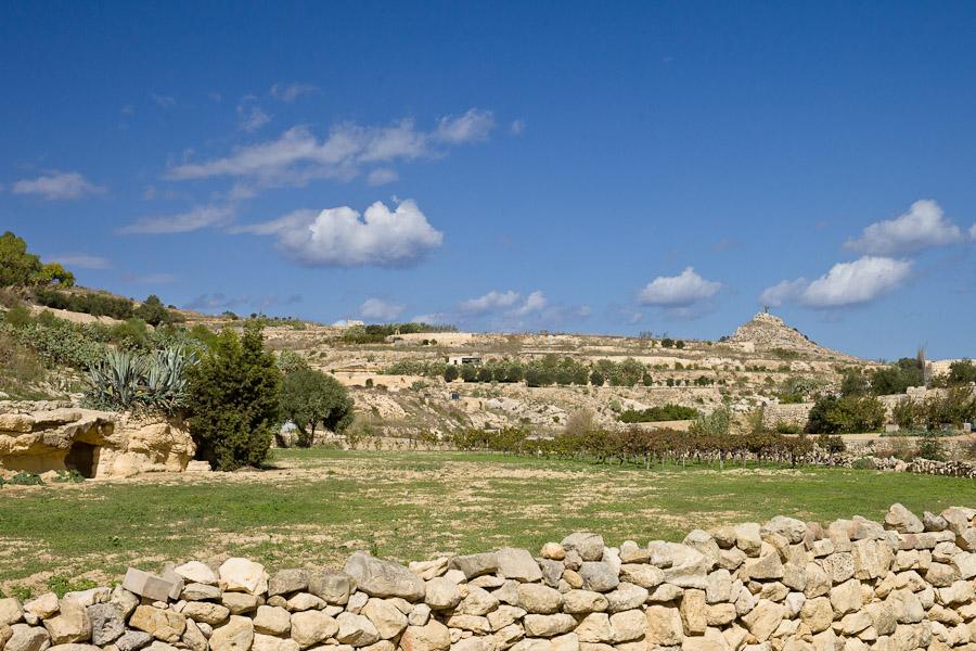 Les champs de ta mena Gozo malte
