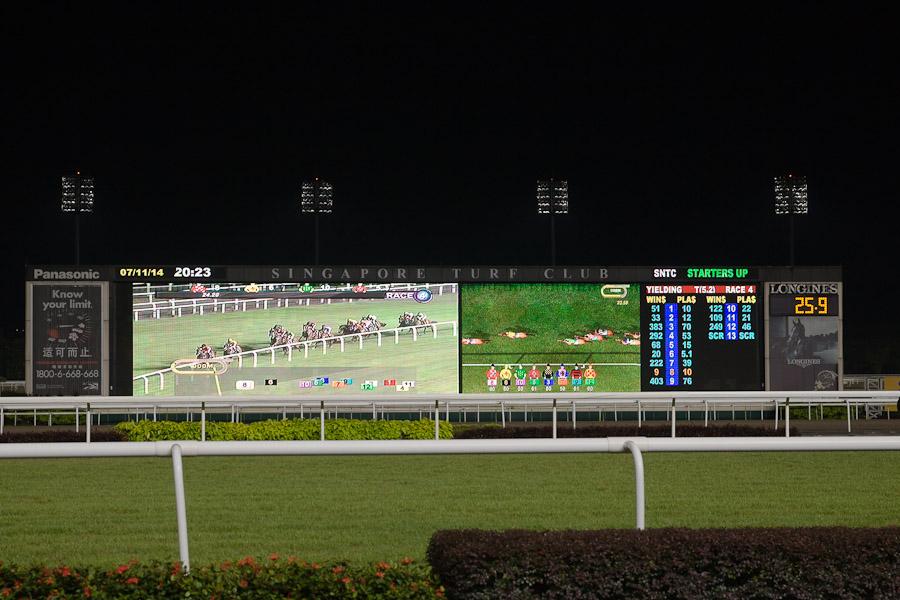 Singapour turf club - avant le départ de la course