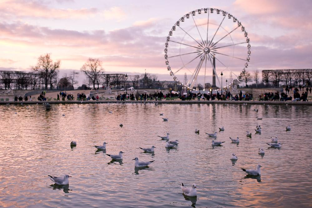 Coucher de soleil sur Les Tuileries