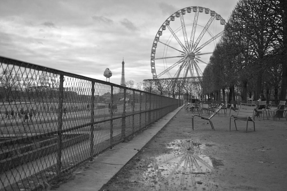 Paris en noir et blanc - La mouette qui regardait la tour eiffel