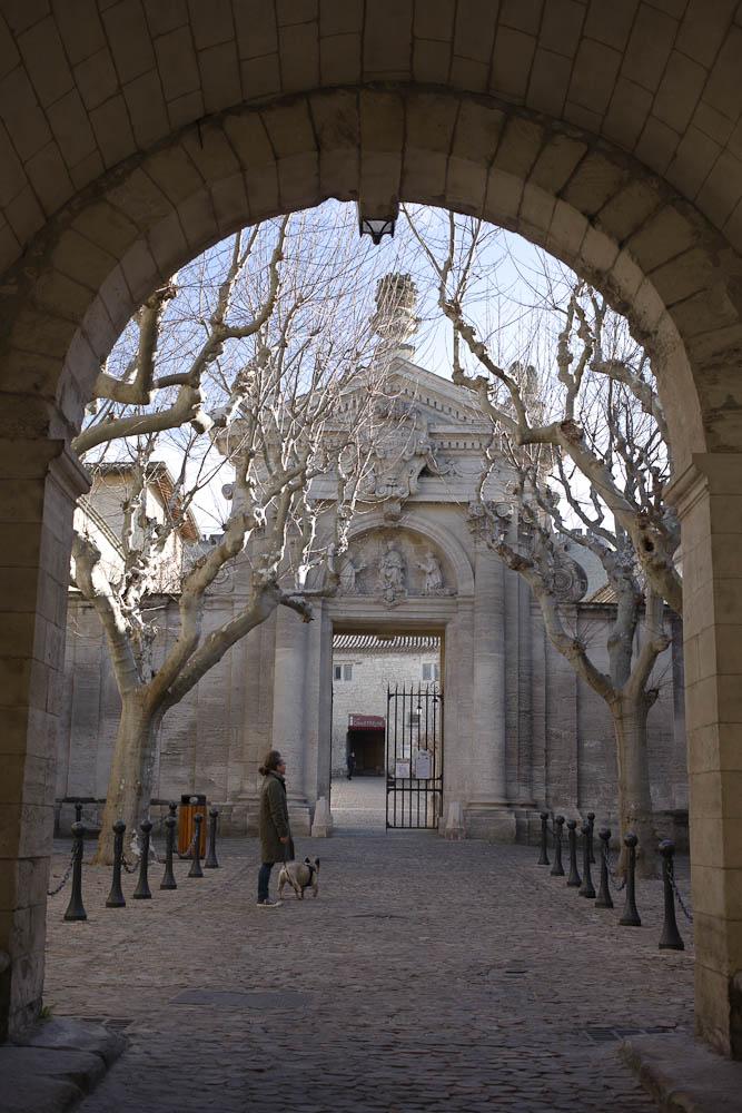 Provence La chartreuse villeneuve lez avignons