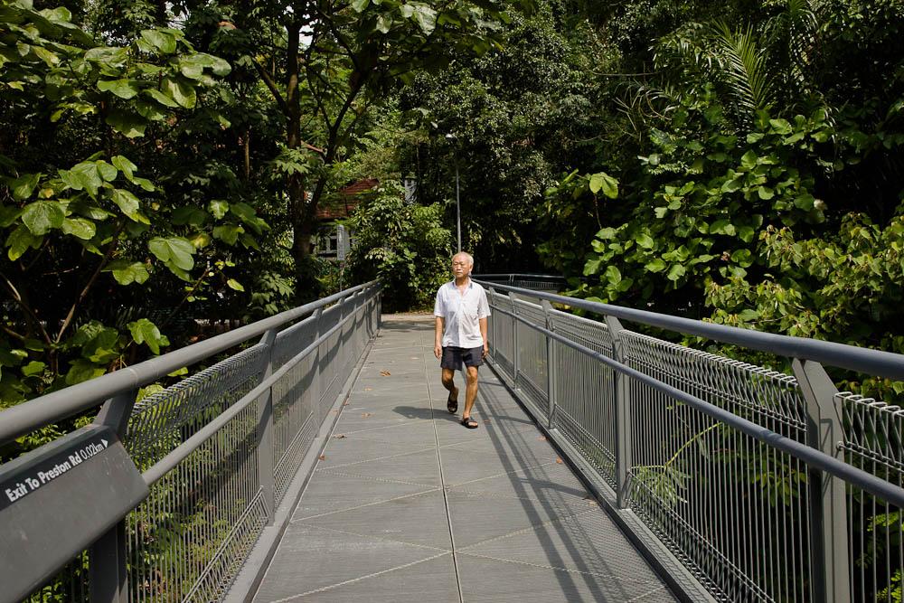 Scène de rue dans une Singapour authientique - Promenade au vert dans un parc