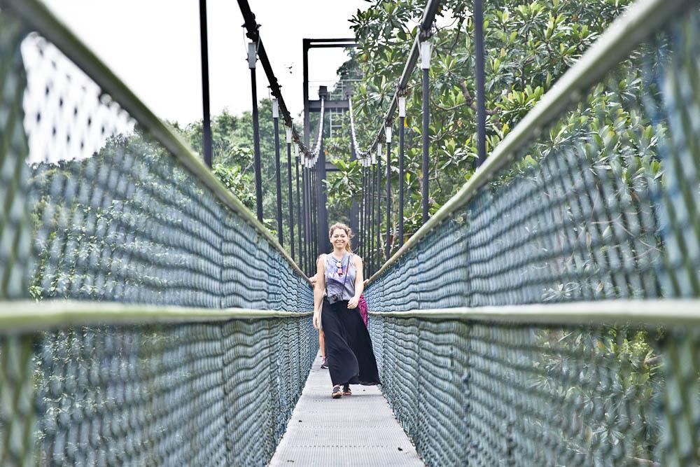 Scène de rue à Singapour - Julie sur un pont de singe dans la réserve de Buckit Timah