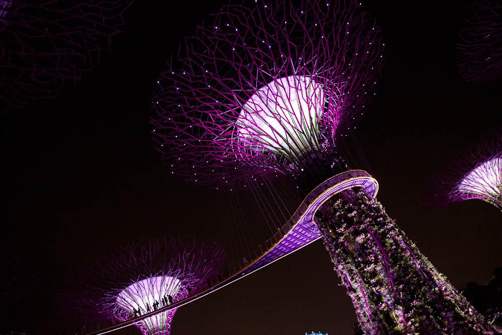 Que faire à Singapour ? Gardens by the bay, un jolie jardin botanique à visiter de nuit pour assister au son et lumière