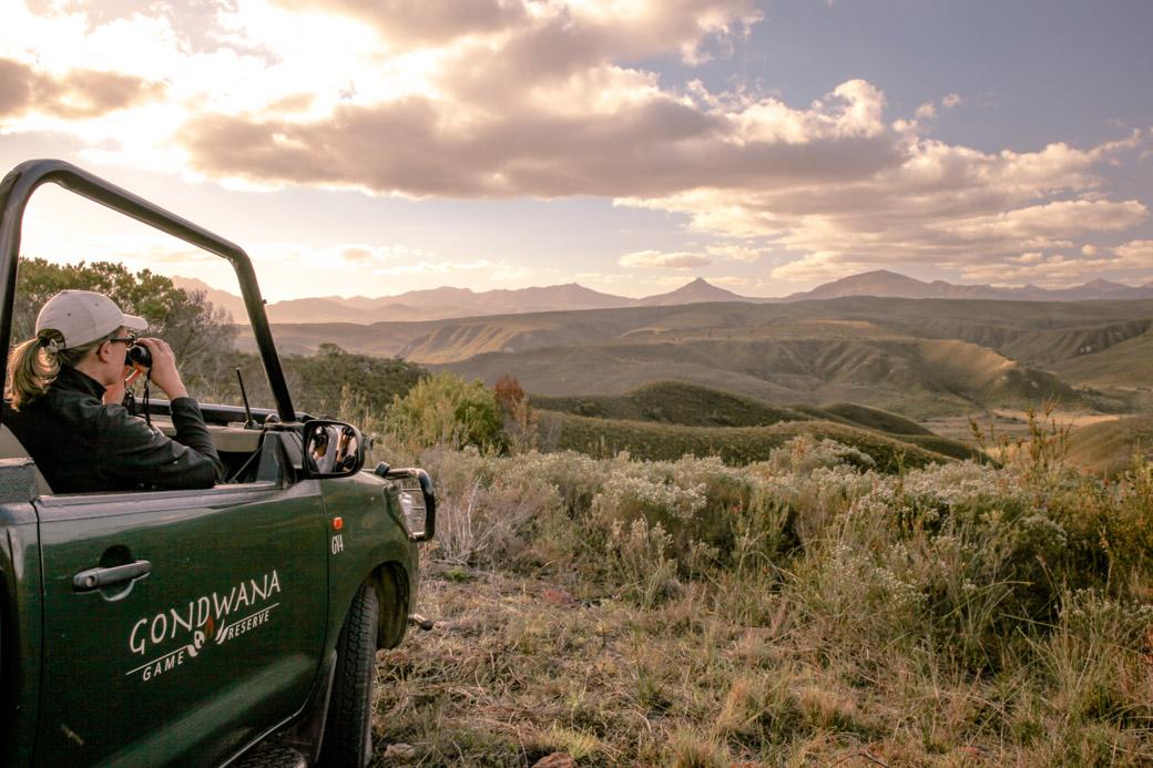 Safari en Afrique du sud - Mélanie Gondwana game reserve