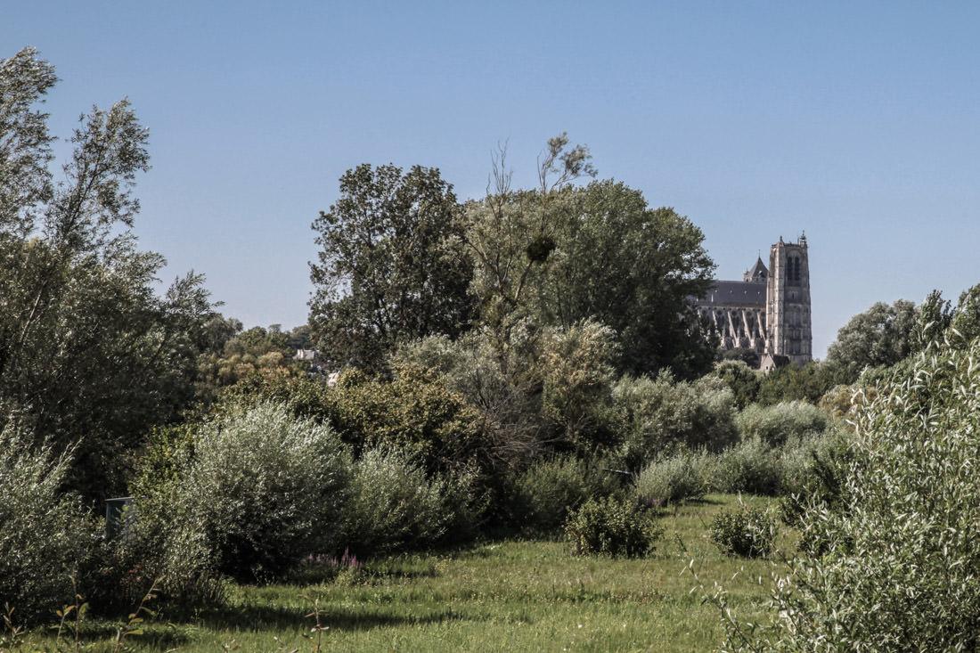 La cathédrale vue des marais Bourges