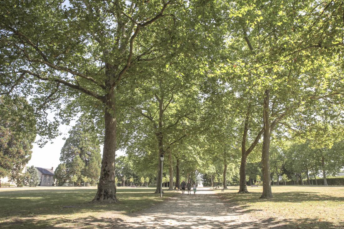 regard sur le Berry - les grands jardins aubigny sur nere