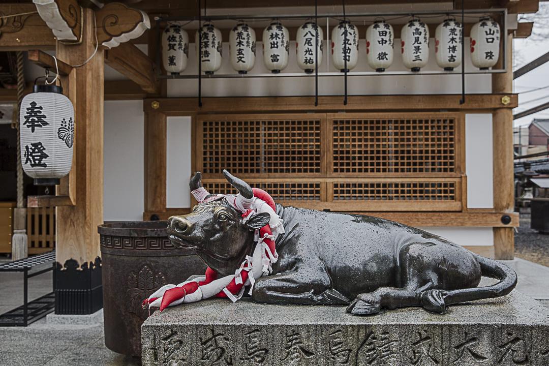 La vache d'iga est elle aussi au temple