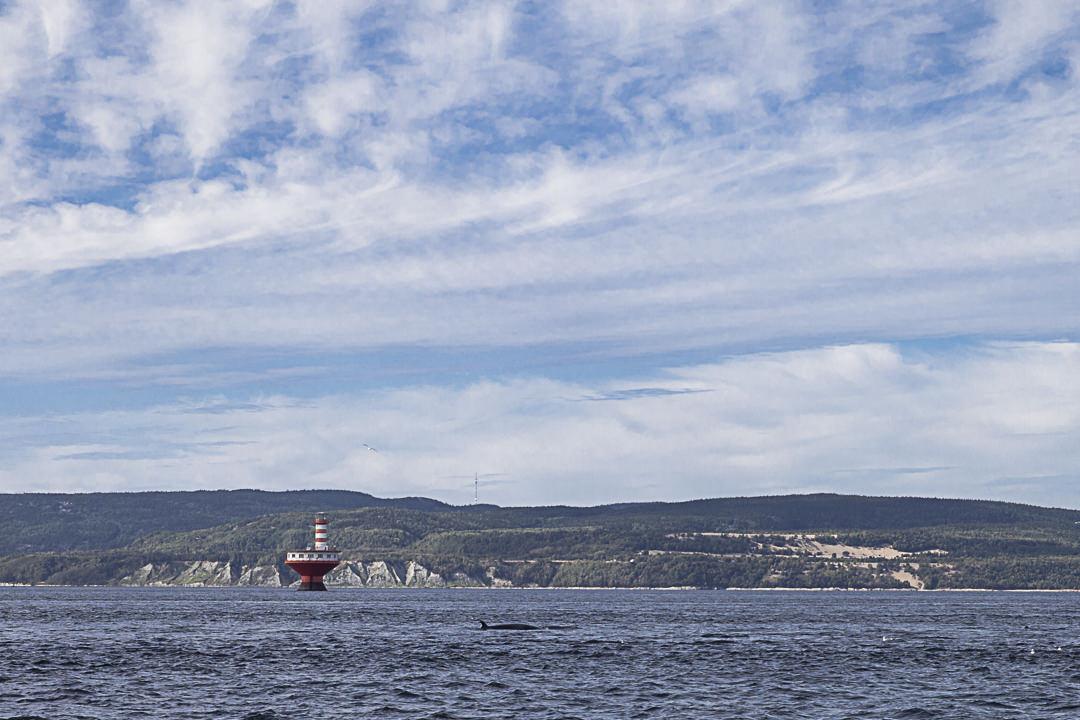 Le phare du haut-fond prince sur le Saint Laurent