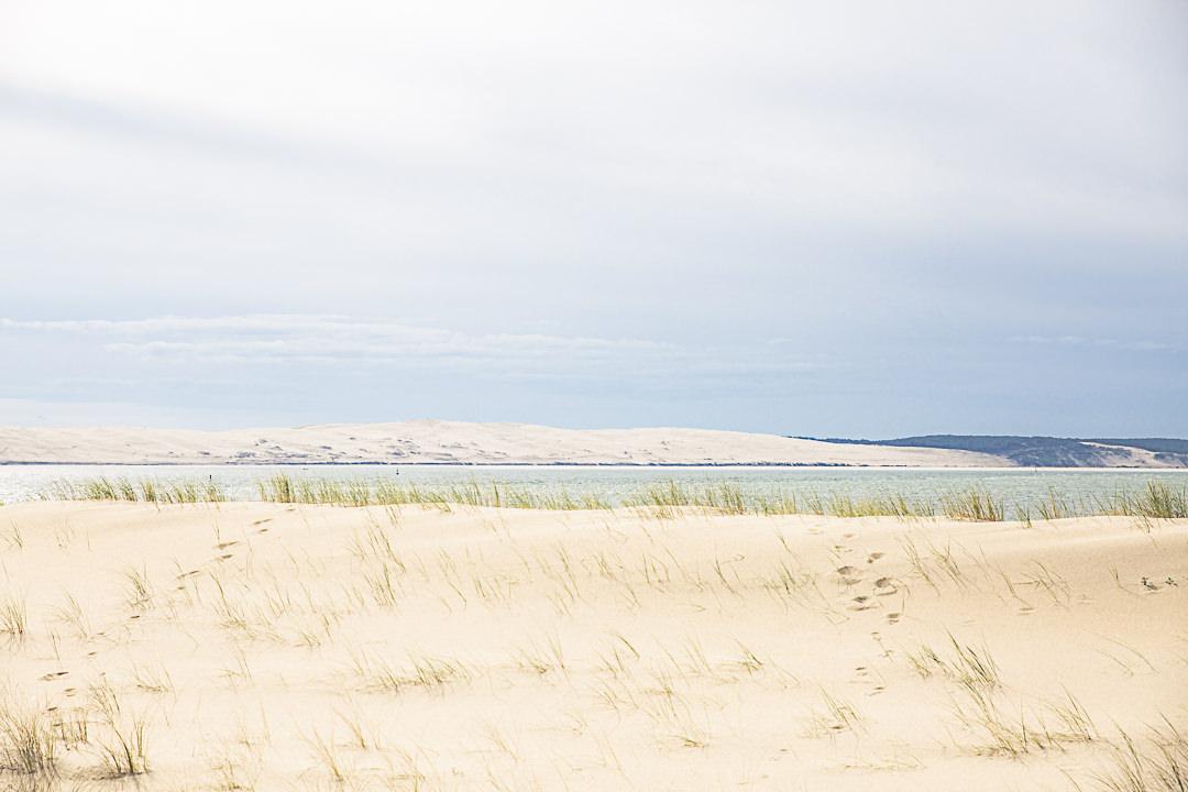 La dune de la pointe du Cap Ferret