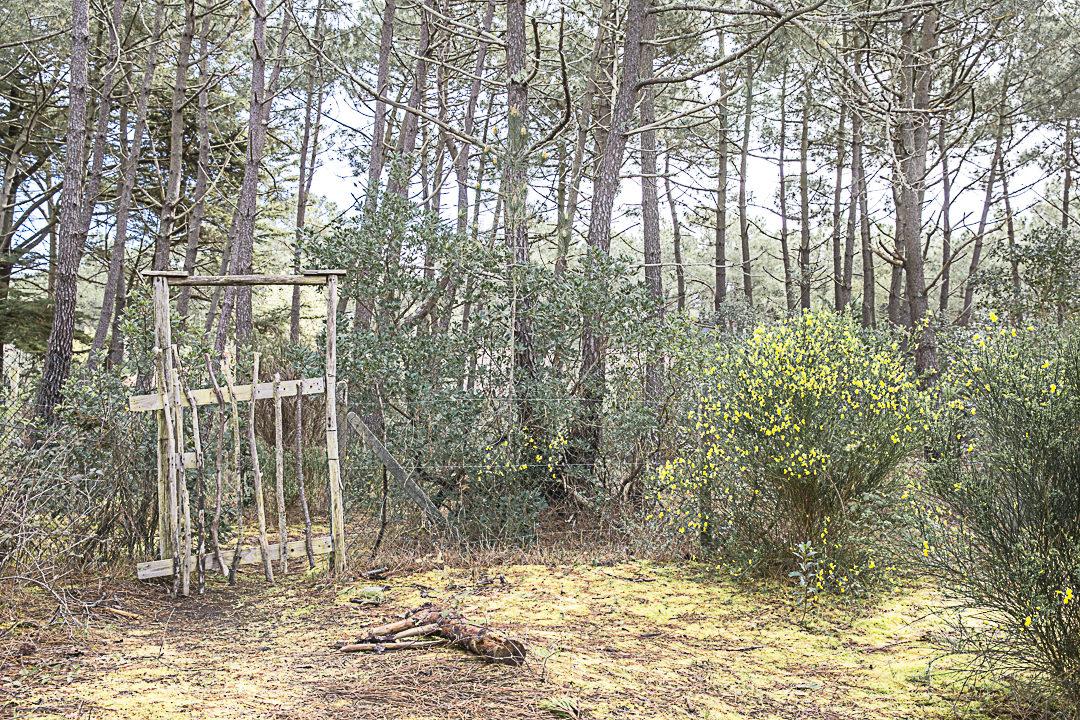 Le sentier de l'abécédaire Cap Ferret