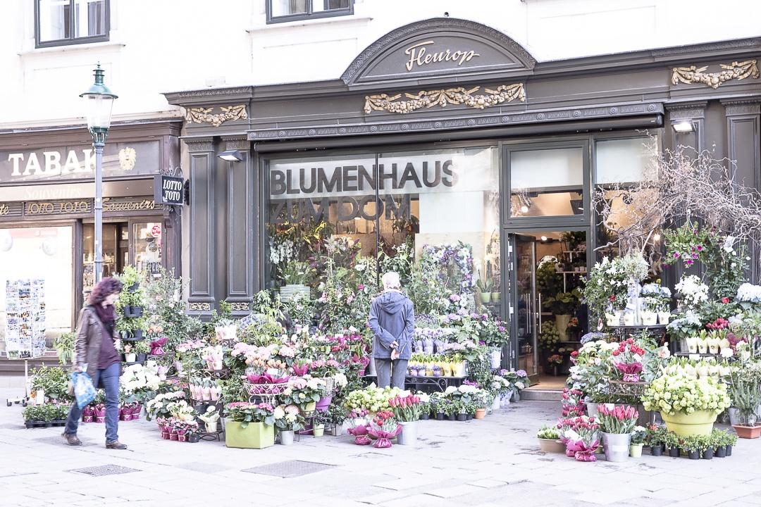 Fleuriste au pied de la cathédrale Saint Etienne