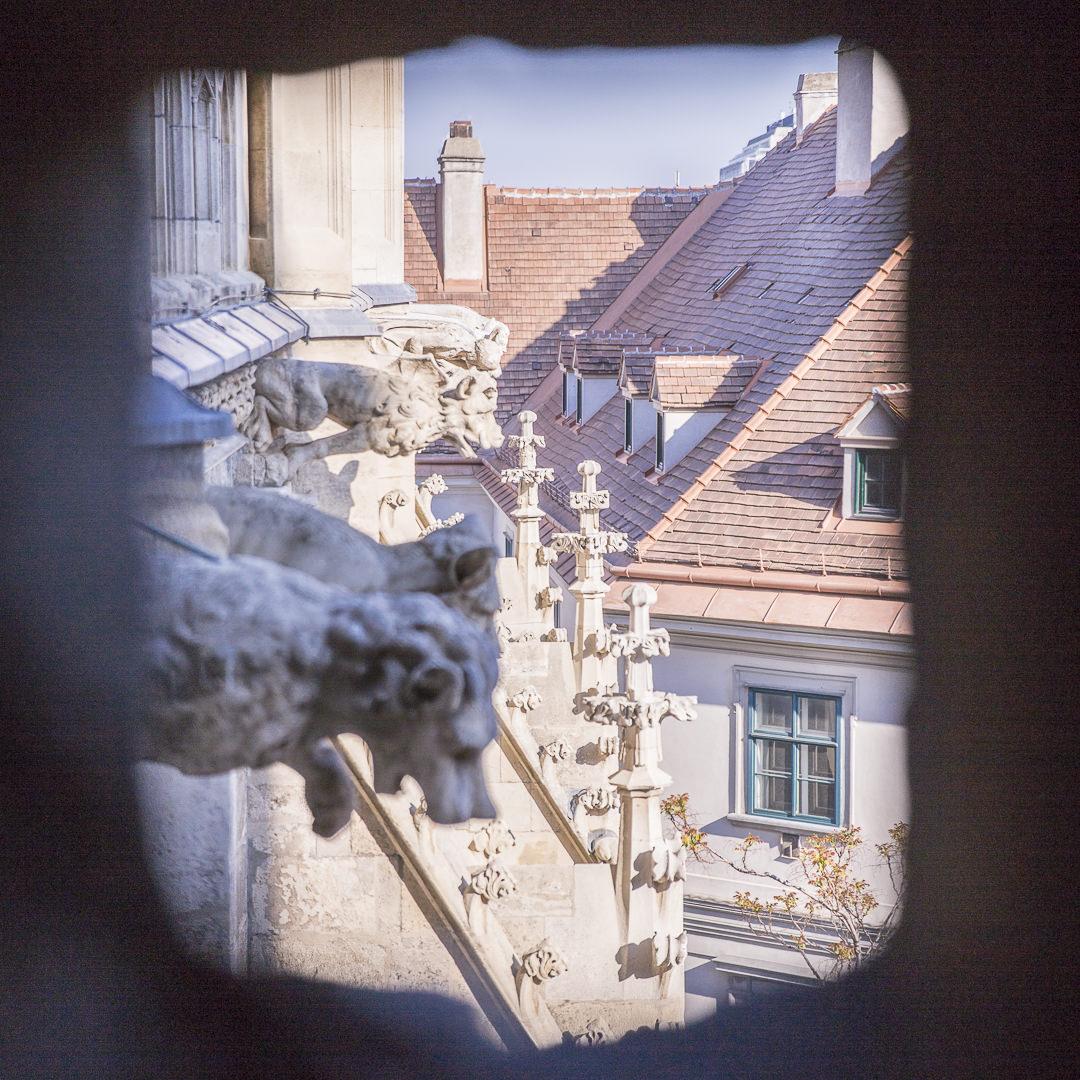 les gargouilles de la cathédrale saint Etienne