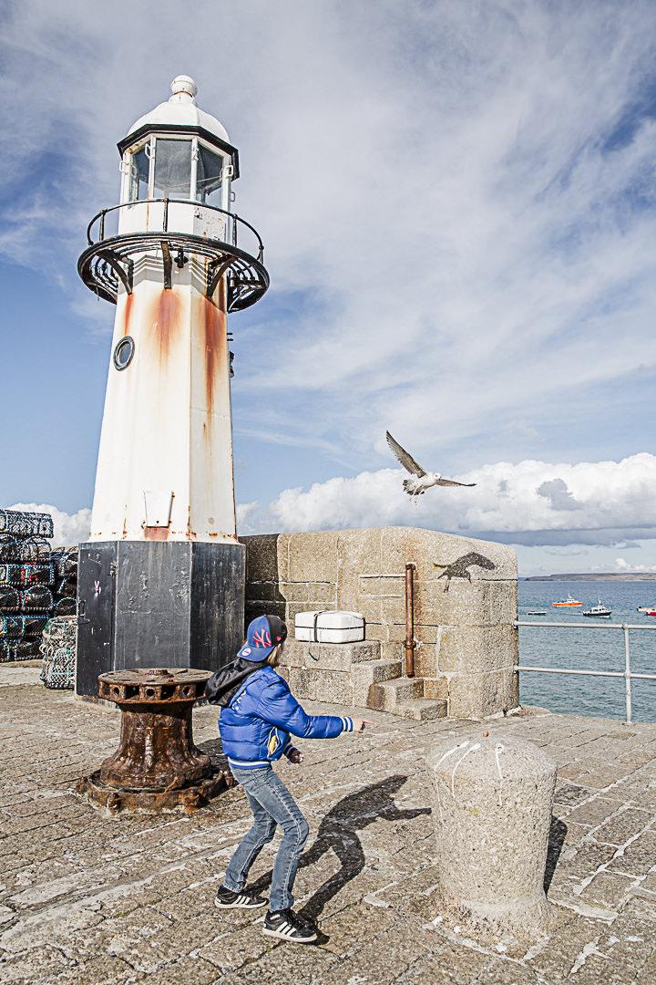 Road Trip en Cornouailles - Jouer avec la mouette à Saint Ives