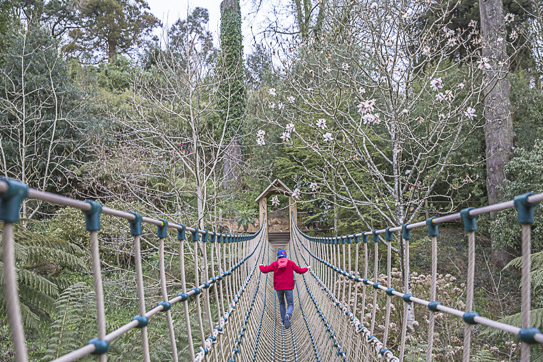 Road Trip en Cornouailles - Pont de singe des jardins de Heligan