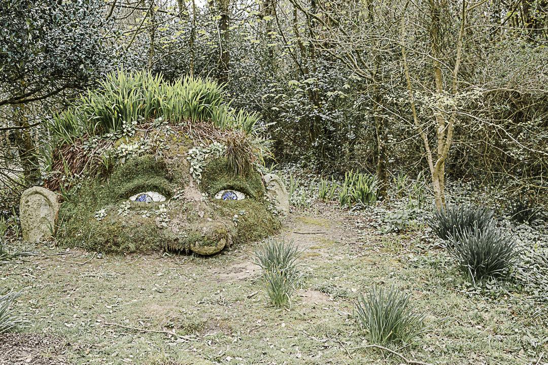 Road Trip en Cornouailles - Le géant des jardins de Heligan