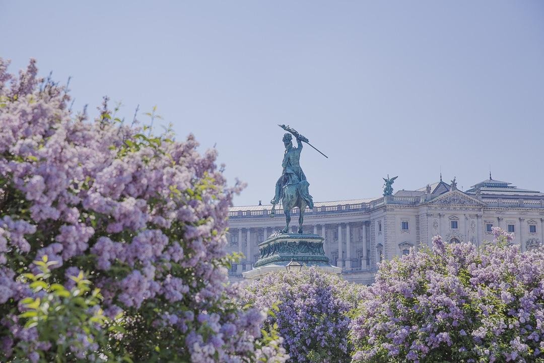 Les lilas sur le palais de Hofburg Vienne