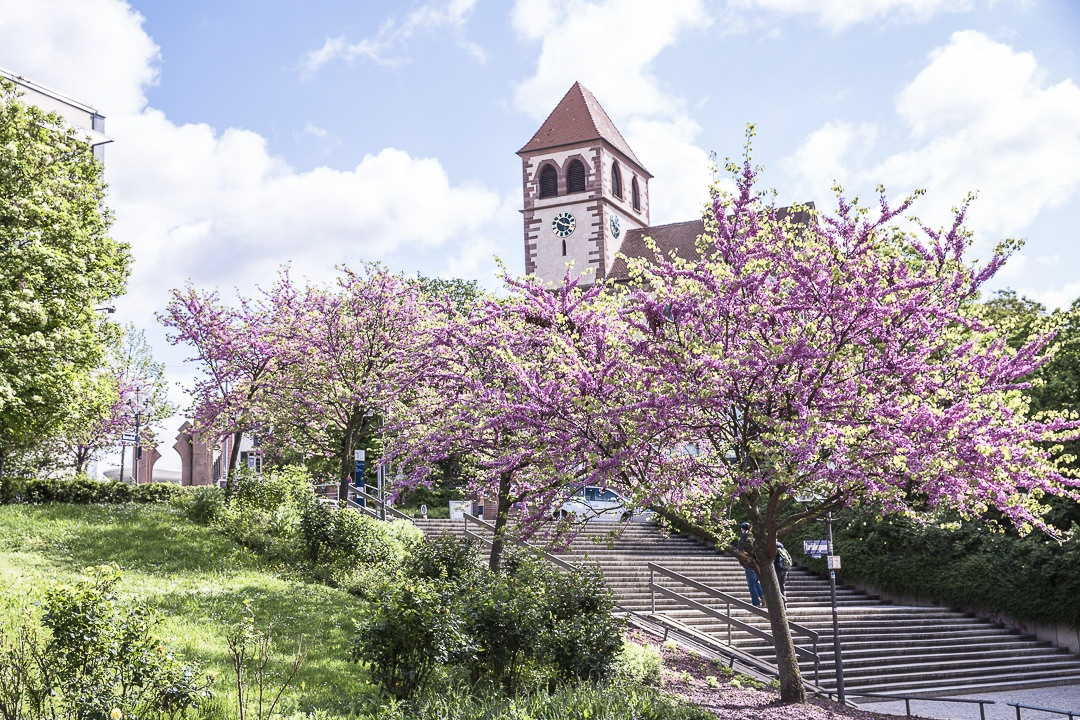 Le centre ville fleuri de Pforzheim