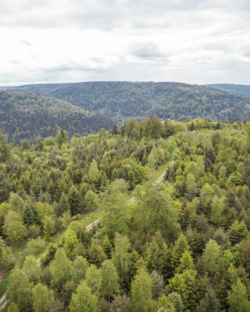 Vue à l'infini sur la forêt noire, à deux pas de Pforzheim
