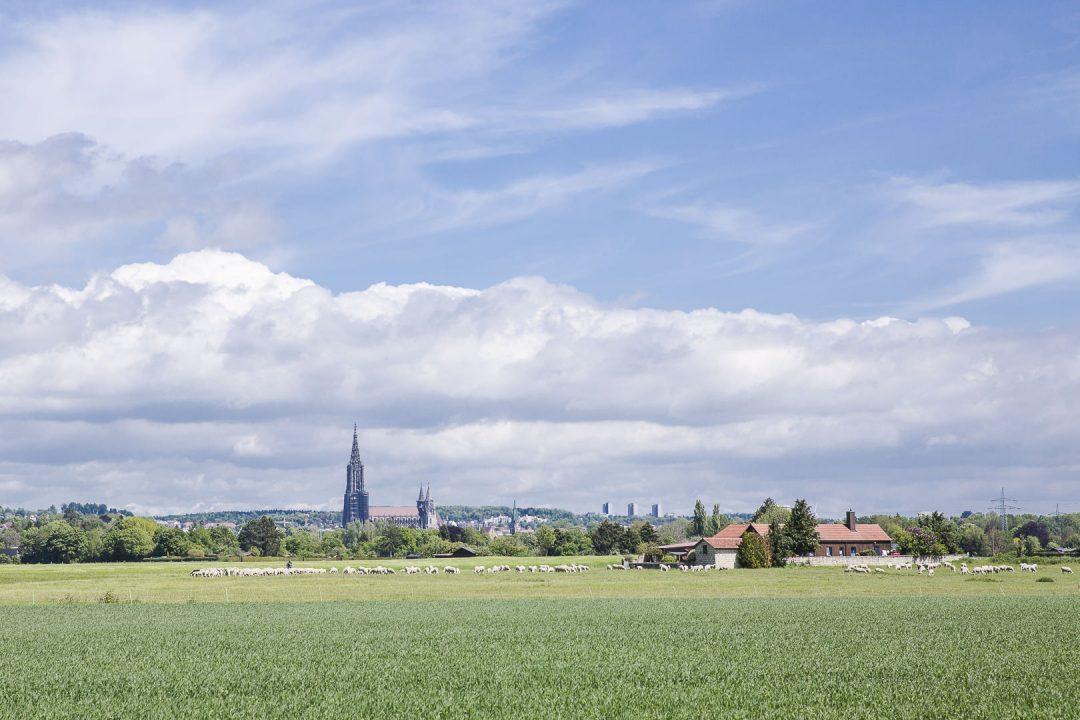 Vue sur Ulm depuis les champs - allemagne