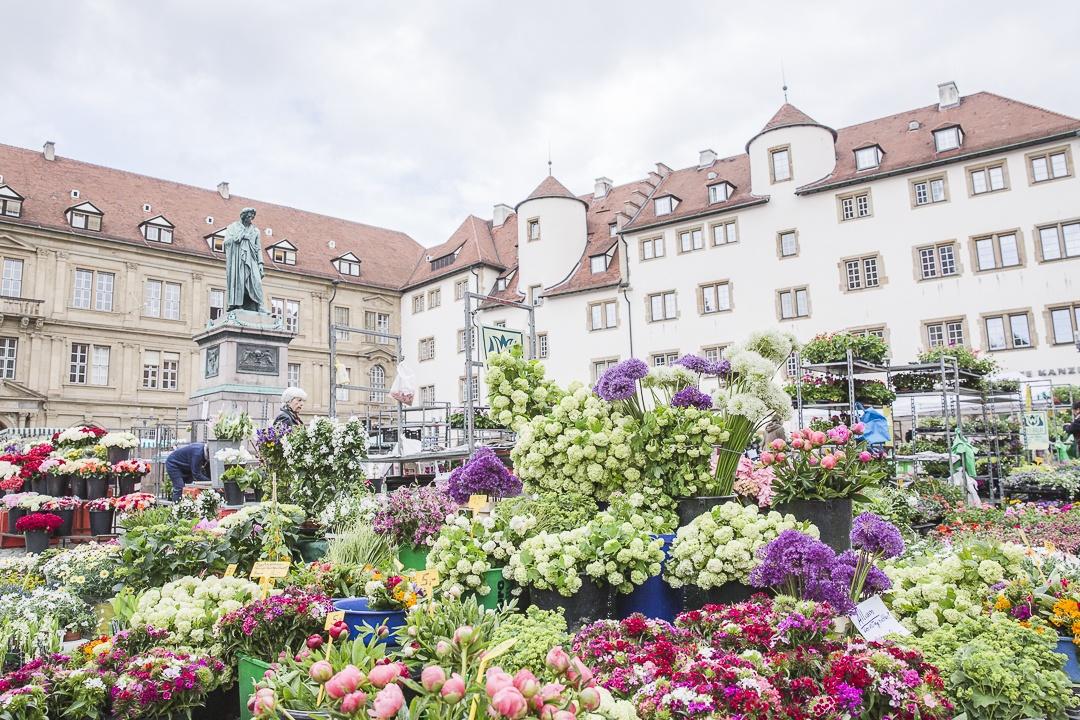 Marché aux fleurs de Schillerplatz - Stuttgart