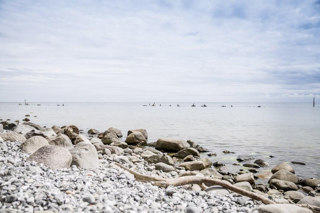 Vue sur la mer Baltique depuis le parc national de Jasmund, patrimoine mondial de l'Unesco - Ruegen, Allemagne